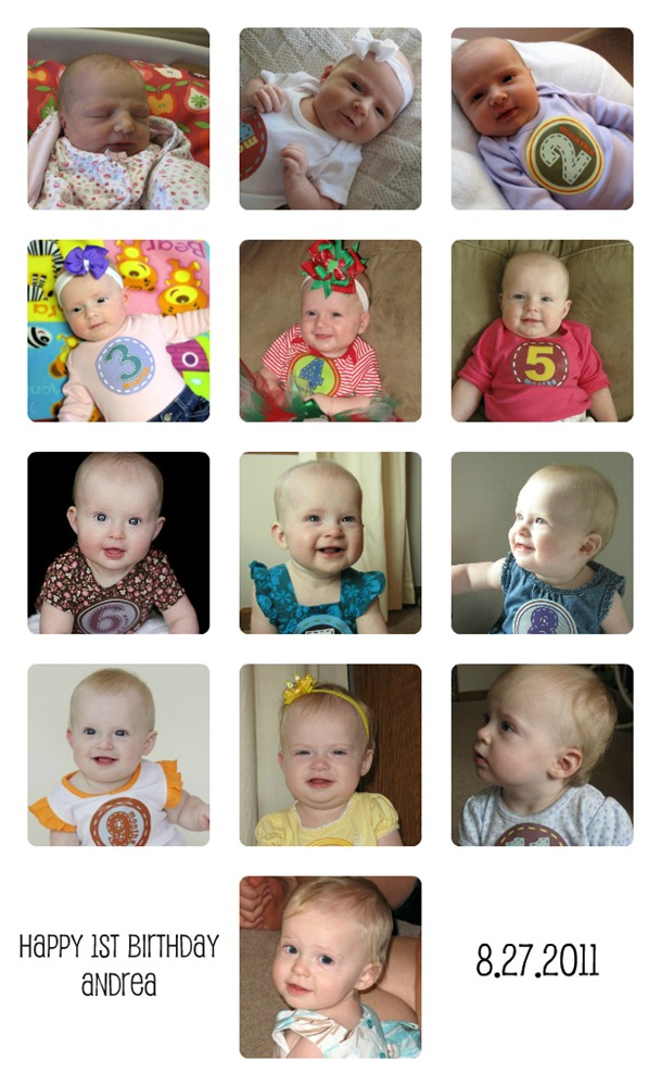 First Year Of Life Photo Collage