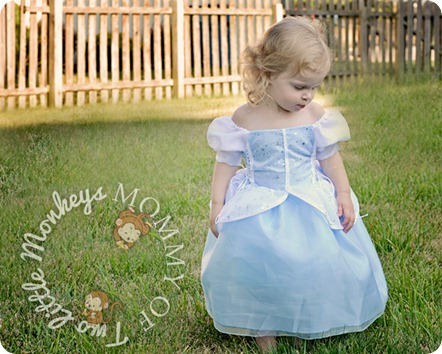 princess cinderella dress