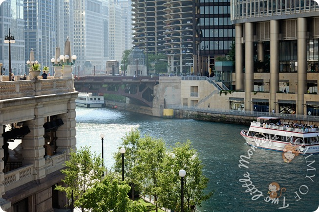 River boats in Chicago