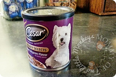 cesar meaty selects filet migon dog food