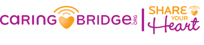 CaringBridge_printlogo_twocolor_CMYK_large (1) copy
