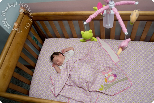 Baby Bedding And Nursery Collections From Lolli Living