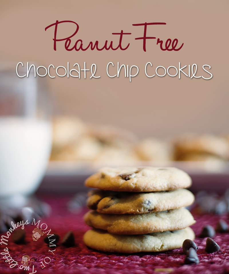 Peanut Free Chocolate Chip Cookies Recipe