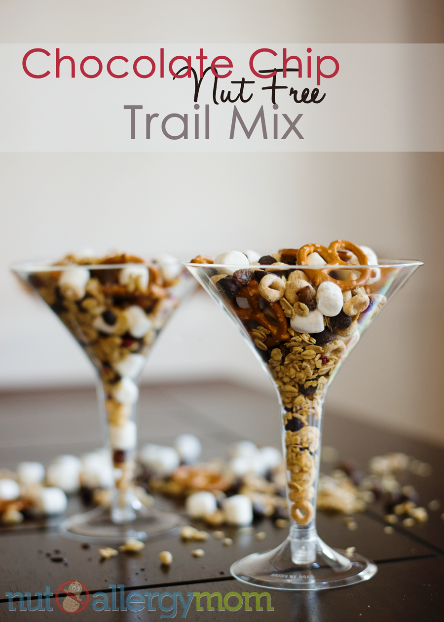 Nut Free Trail Mix - Chocolate Chip, Cherry & Granola