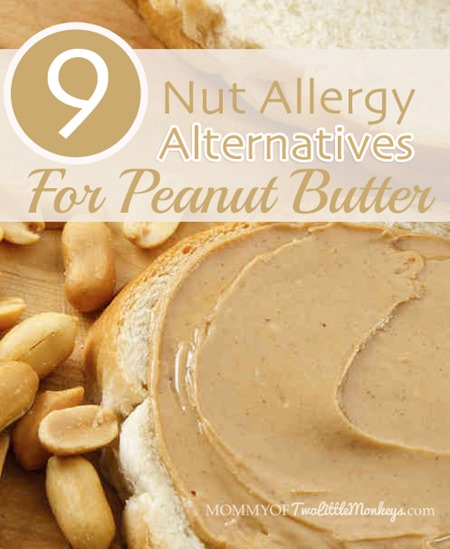 9 Nut Allergy Alternatives for Peanut Butter