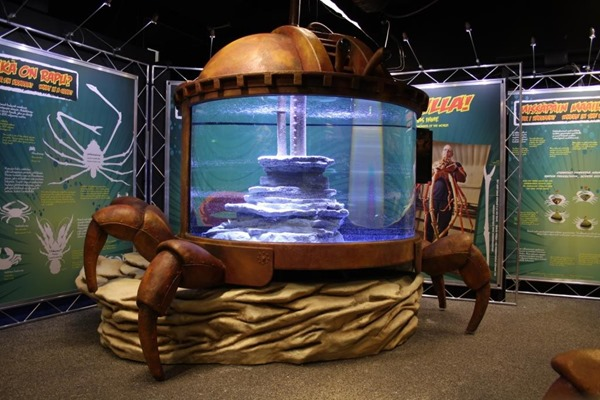 SEA LIFE Kansas City Aquarium Debuts Claws Exhibit!