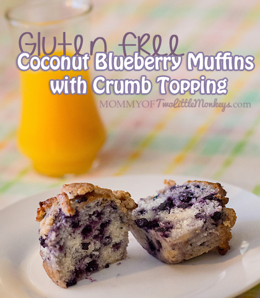Coconut Blueberry Muffins with Crumb Topping - Gluten Free!