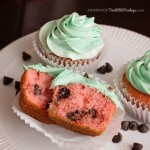 Watermelon Cupcakes - Summer Time Party Dessert!