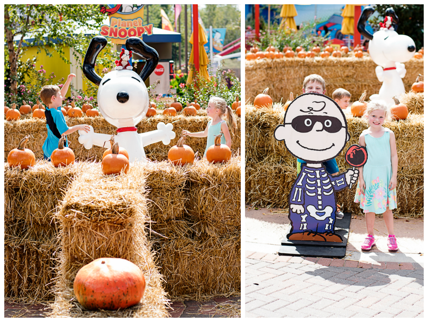Things to do in Kansas City : Great Pumpkin Fest at World's of Fun